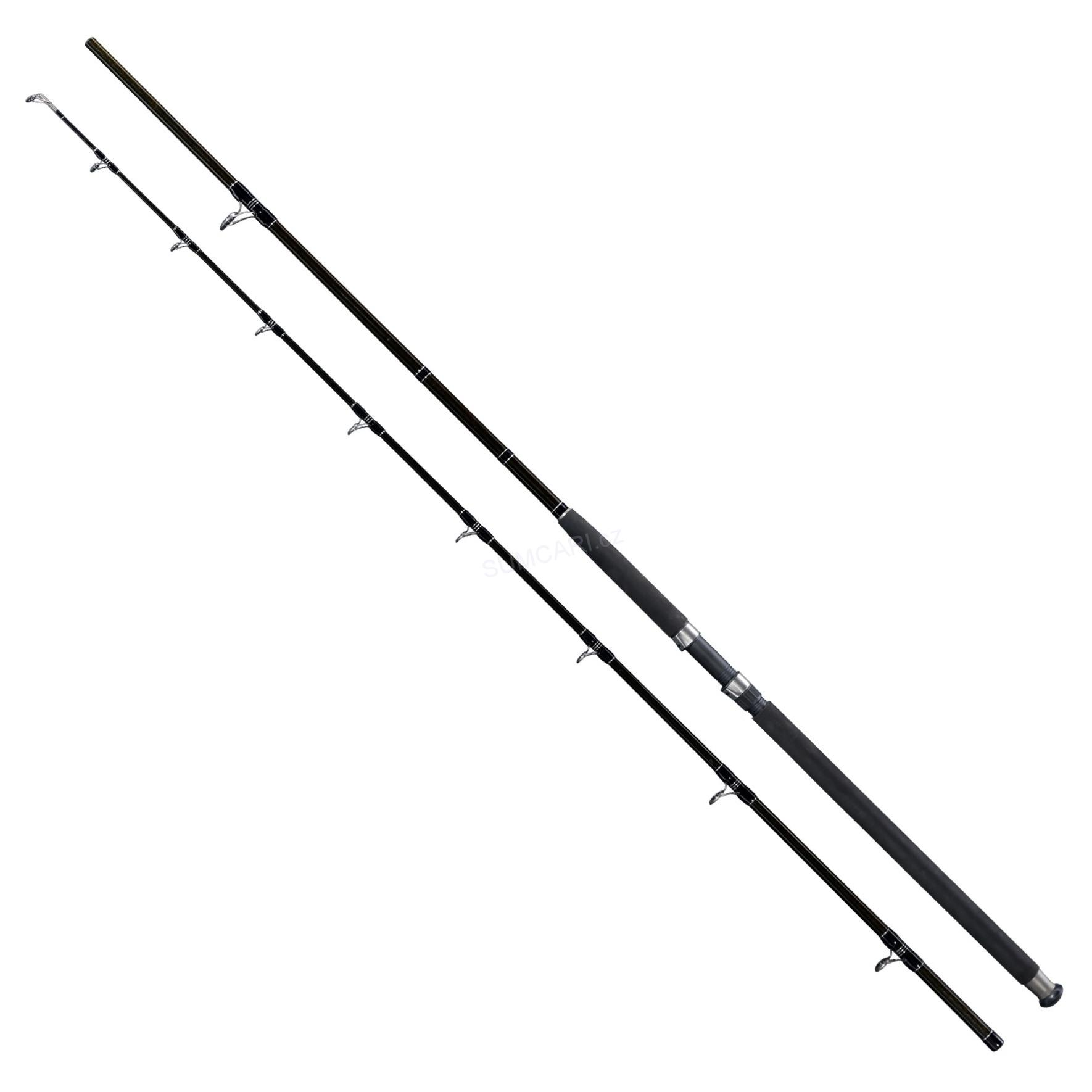 Deluxe Catfish prut na sumce 2.40m 400g